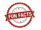 20 Fakta Unik Mengenai Bahasa Inggris