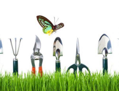 Kata-kata bahasa Inggris yang Berkaitan dengan Berkebun