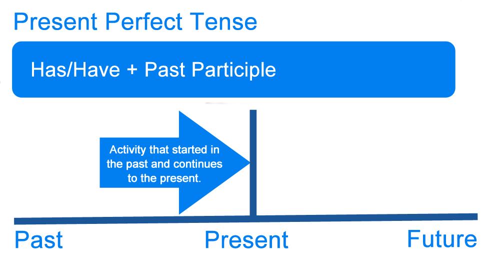 Contoh Soal Present Perfect Beserta Pembahasan Lengkapnya