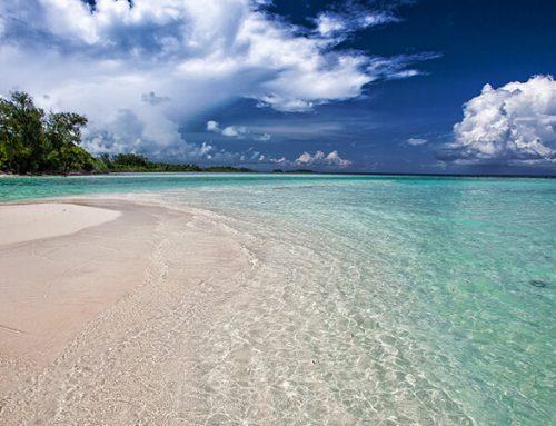 Kosa kata yang Berkaitan dengan Pantai dalam Bahasa Inggris beserta Artinya