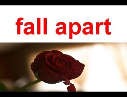 Contoh Phrasal Verb dengan Menggunakan Kata Fall